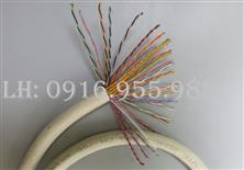 AMP/COMMSCOPE Cáp mạng Cat5e UTP 25 pair P/N: 219589 - 1 COMMSCOPE